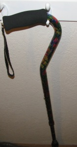 My newest friend, Mom's cane