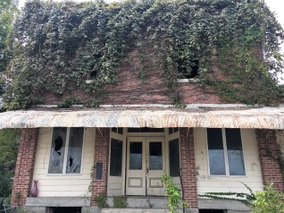 abandoned but for the ivy