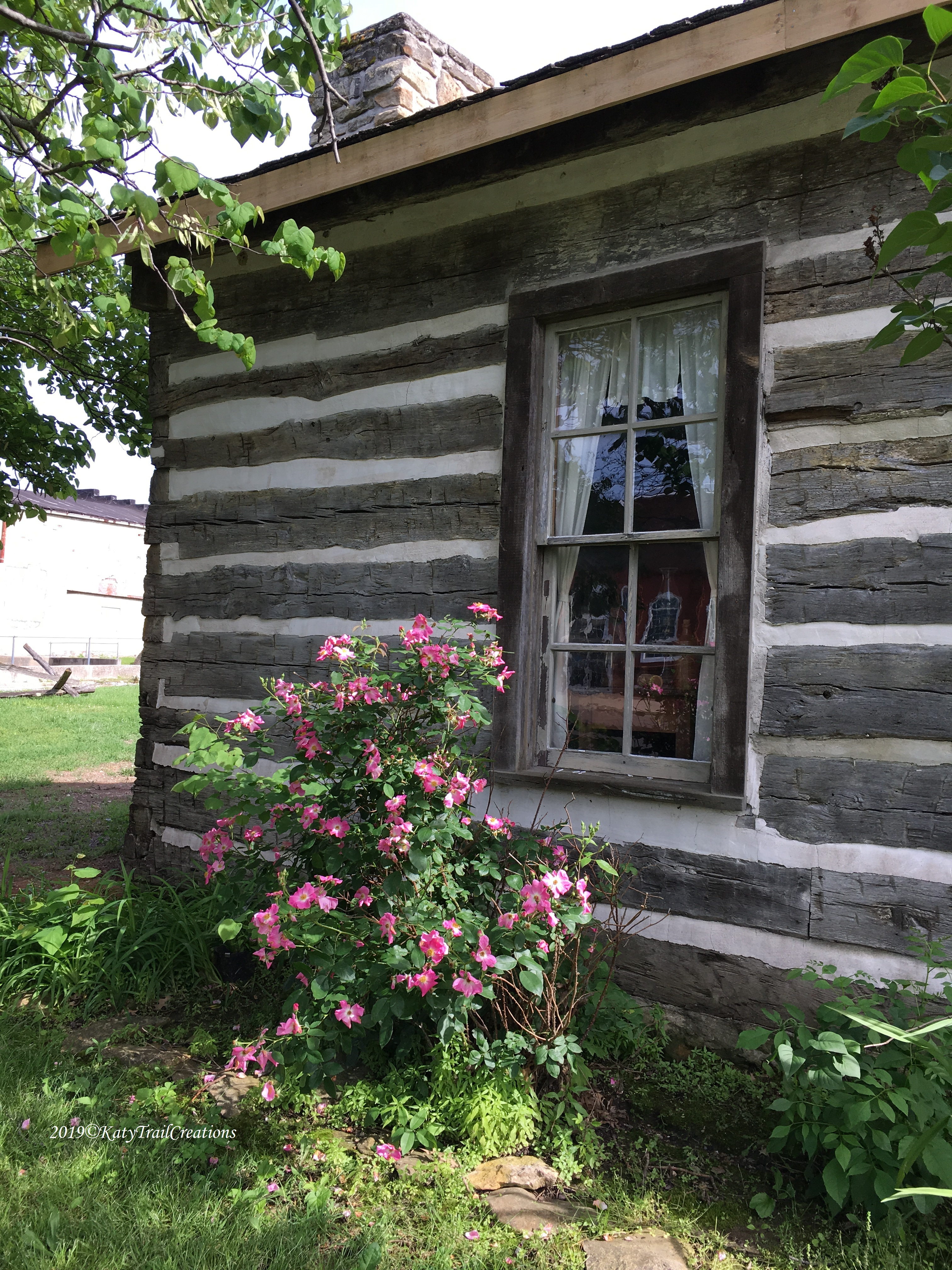 Wild Roses are perfect along this window. Love them!