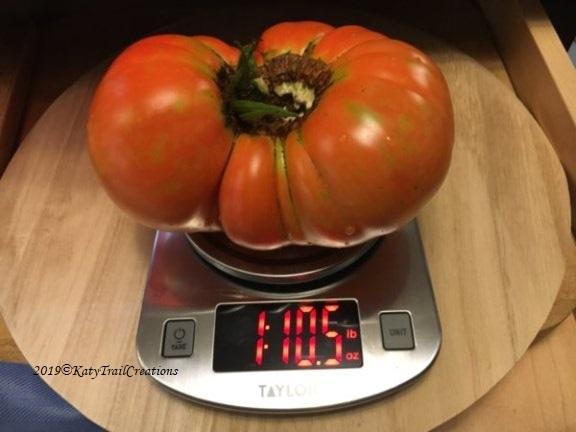 1 lb. 10.5 oz.
