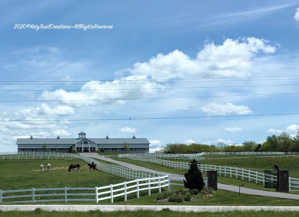 Horse Stables on Hwy 54